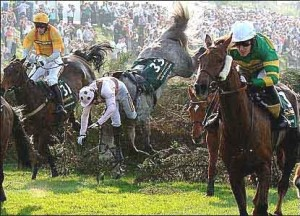 The Aintree Racecourse offers challenge for both the jockey and horse.