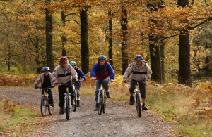 The Grizedale Forest has biking trails that challenge all levels of bikers.