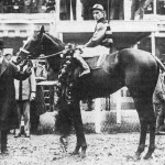 Three Notable Triple Crown Winners