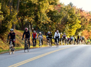 fall-bikes