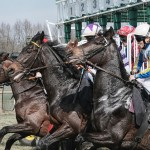 Bet It Out: Making Money on this Year's Betting for Preakness Stakes