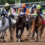 What are the Different Types of Horse Racing that you can bet on?