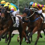 The Secrets Behind The Popularity Of Horse Racing