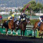 Beginner's Horse Racing Guide: How To Enjoy Your Time At The Races